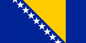 flag_of_bosnia_and_herzegovina_svg.png